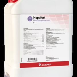 HEPAFORT solution orale